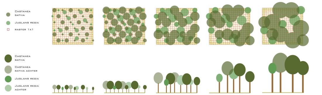 Planting stamp